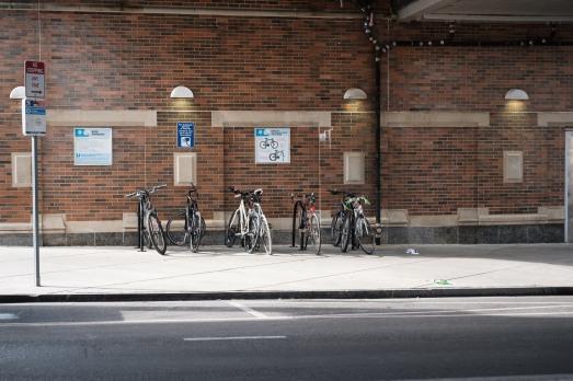 """Cycles"" - Walnut Hill"