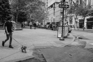 """""""Square"""" - Rittenhouse Square"""
