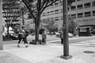 """Cornered"" - Logan Square"